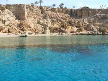 Middle Garden Reef, Sharm El Sheikh