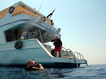 Picture of Elite Diving in the Red Sea