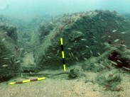 Boilers on the Iona II wreck site